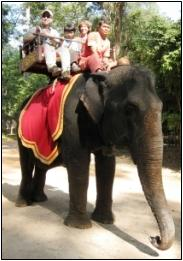 Cambodia Ties riding elephants at Angkor Wat